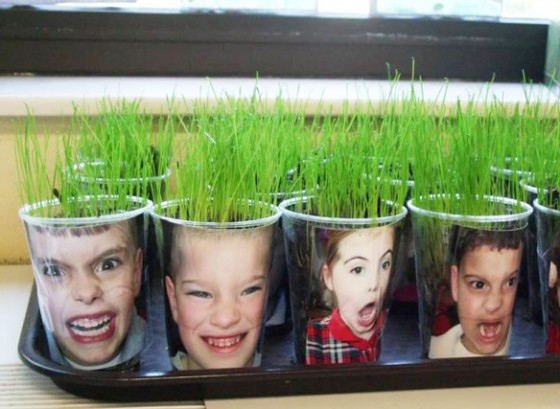 Grass Heads - MN Ag in the Classroom