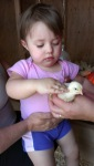 Granddaughter, Sophie, making friends - by Paula