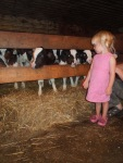 Meeting the calves in the cow barn! - by Danielle K.
