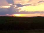 Sunset over a corn field - by Jody