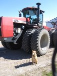 Dog and tractor - by Jodi W.