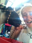 4-H weekend of the Minnesota state fair - by Morgan B.