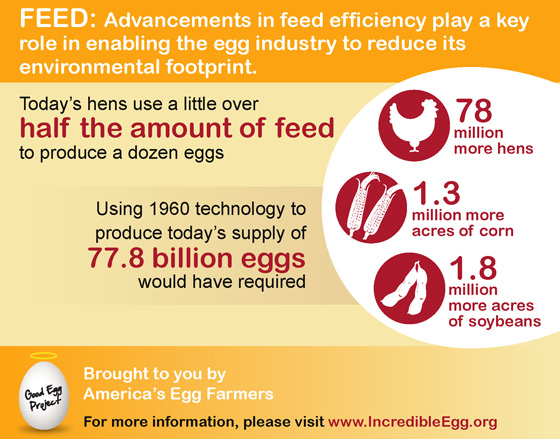 Advancements in Feed Efficiency